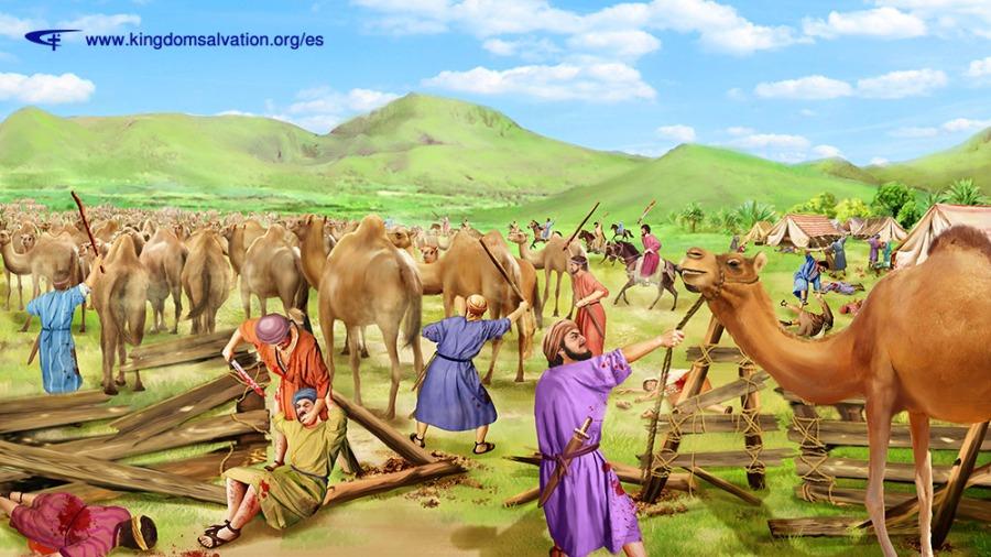 约伯的骆驼被掳走 (1)